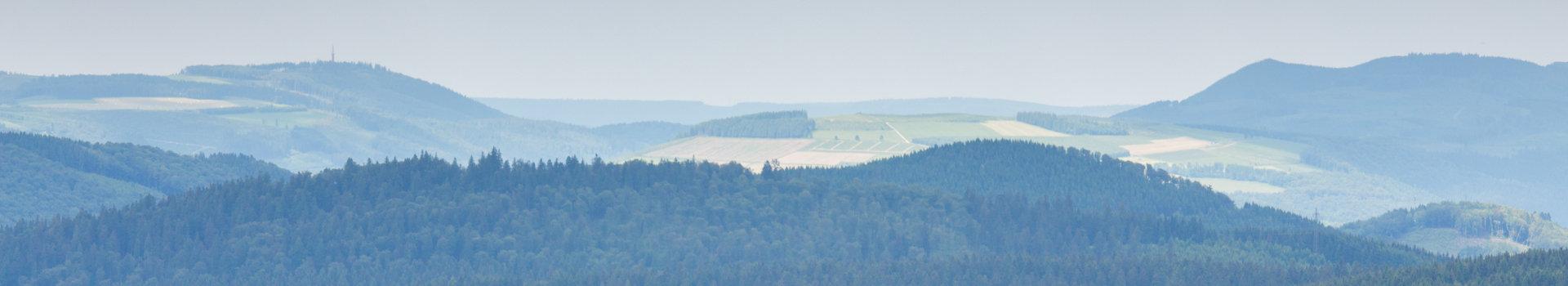 Landschaft mit Hügeln, Wald und Feldern
