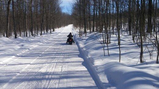 Snowy Trail-9.jpg