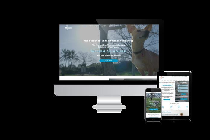Website design for a vet lab
