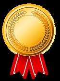 Lieutenant Governor Award
