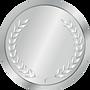 Silver Sponsor Badge