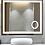 Thumbnail: Electric Mirror