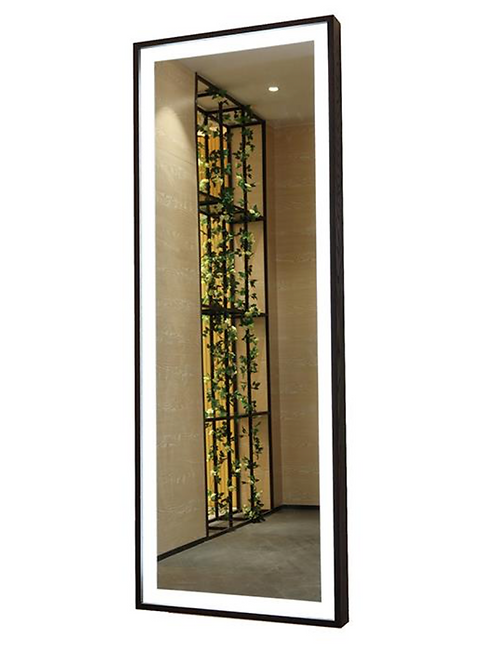 Dressing Framed Lighted Full Length Mirror