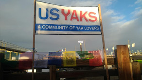 US YAKS AT THE 2020 NATIONAL WESTERN STOCK SHOW