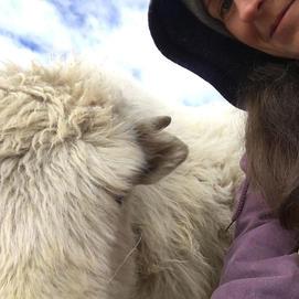 Yak Selfie!