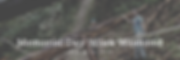 MDWW Banner.png