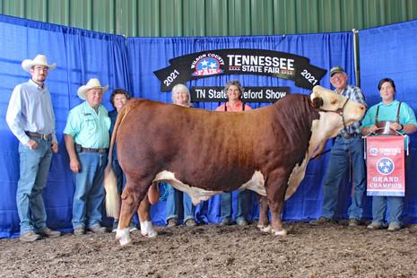 TN State Fair 2021 chmp bull[2].jpg