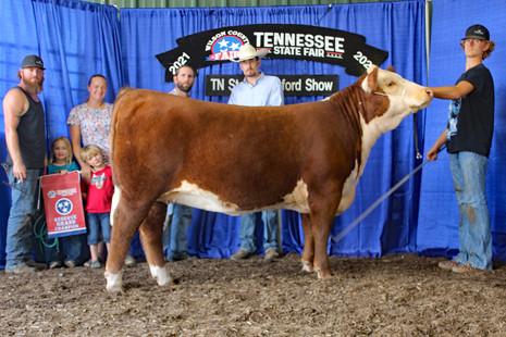 TN State Fair 2021_Res heifer.jpg