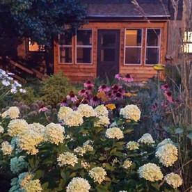 Backyard in Fall - Shorewood