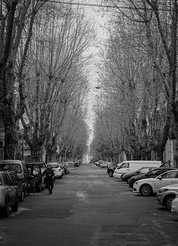 Montevideo IV