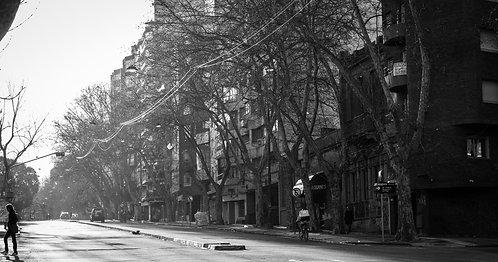 Montevideo XIV