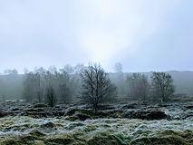 Moor mornings.jpg