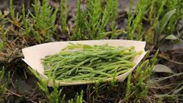 UK Wild Marsh Samphire, from Bello 200g