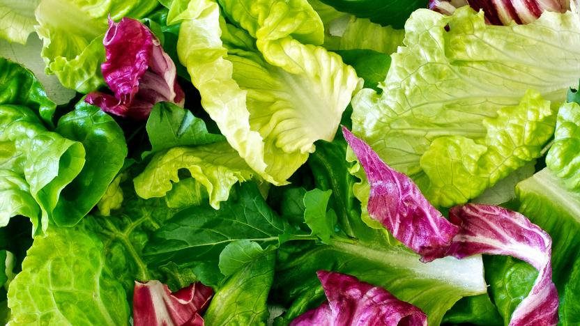 Mixed Salad Leaves (120g) Pack