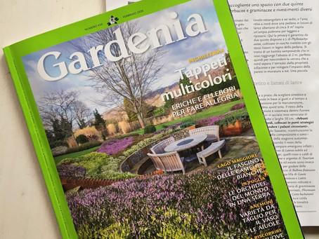 Volumezero su Gardenia