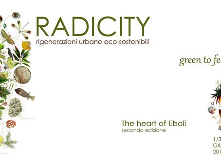 Volumezero a Radicity