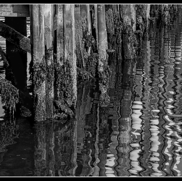 M8. Old Timber Jetty
