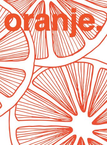 oranje. kleiner formaat.jpg