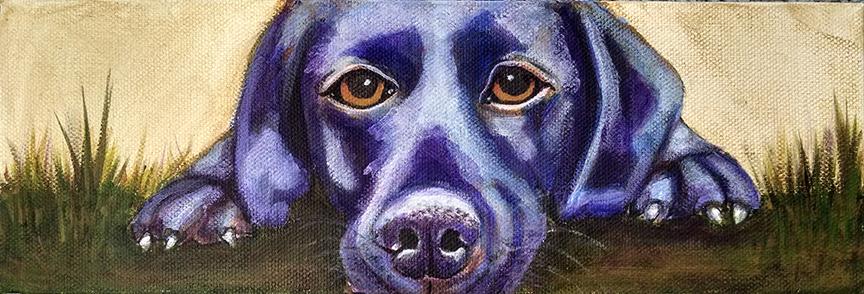 dirtdog