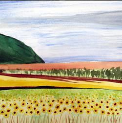 Flynn Hawaiin Sunflower Field