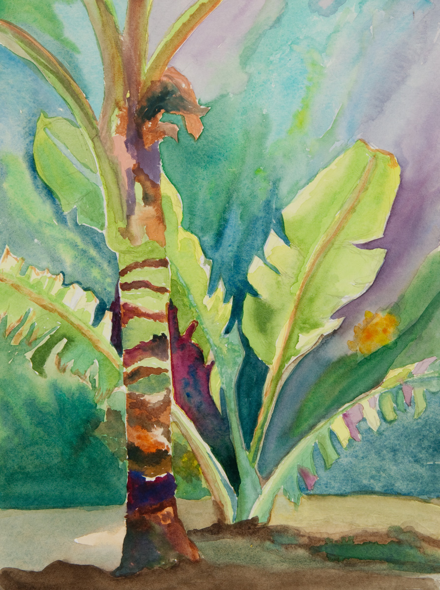 Palm and Banana Leaves