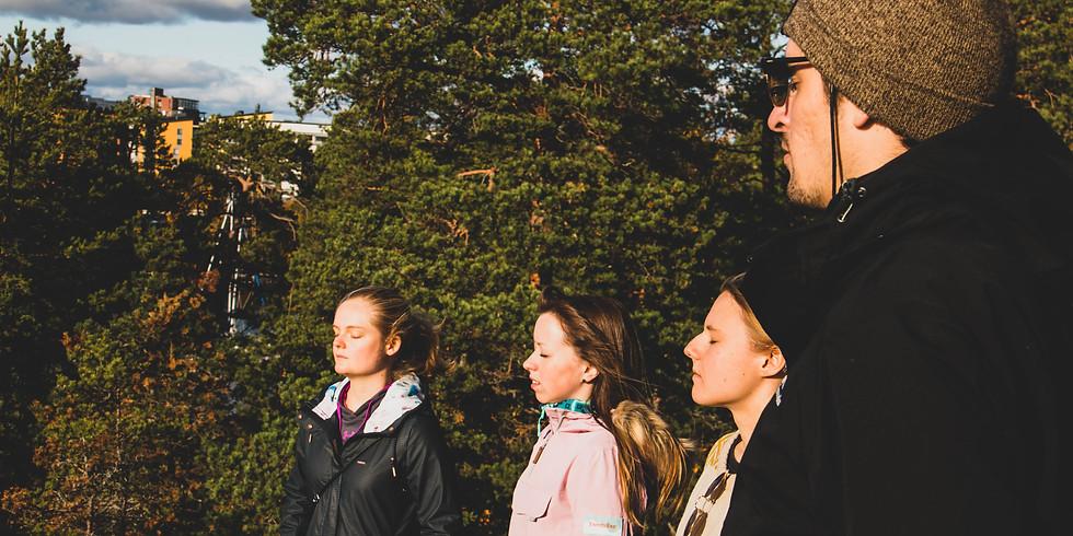 Syyskuun metsäkylpyelämys pienryhmässä