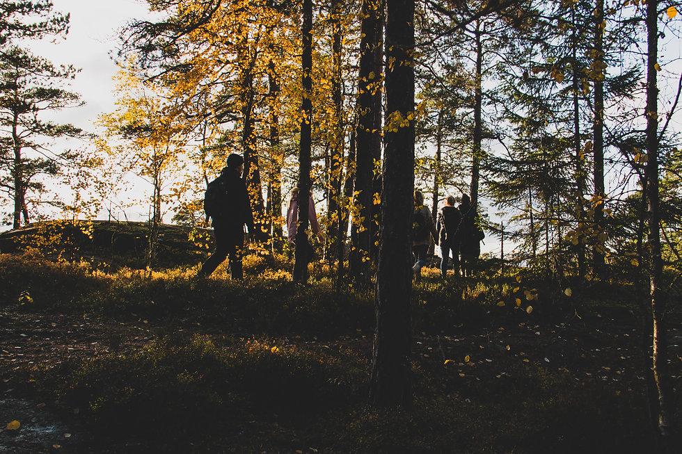 Naturested metsäkylpyjä ja hyvinvointia