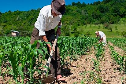 reforma-agraria.jpg