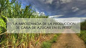 Produccaña.png