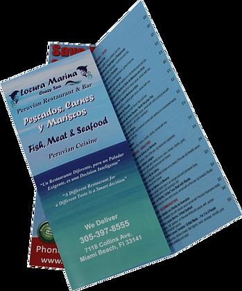 Tri-fold Brochures qty5000