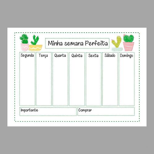 Planner Semanal Cactus