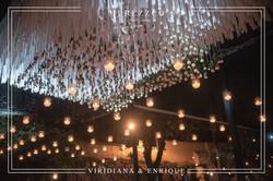 Viridiana & Enrique 7