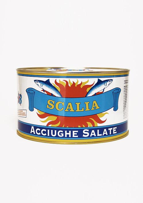 Acciughe sotto sale 5 kg