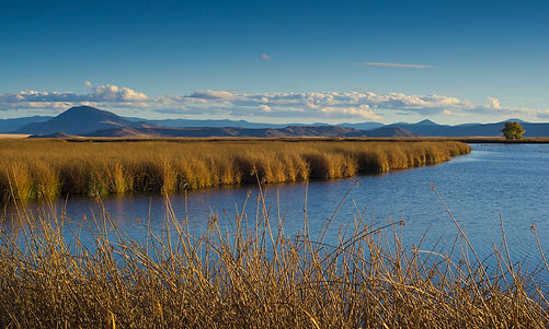 Blue river with brown grasses and blue sky
