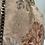 Thumbnail: Glicinetta flower vintage