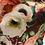 Thumbnail: Glicinetta spring  flower