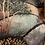 Thumbnail: Glicinetta  giardino dell'Eden