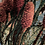 Thumbnail: Gianduiotta giungla
