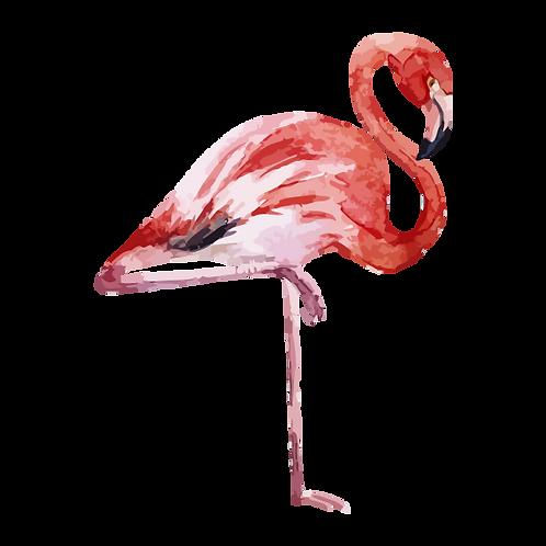 Flamingo donatie Jungle Boogie