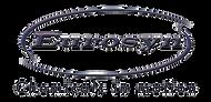 Eurosyn_logo_edited.png
