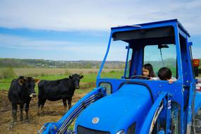 ERba Verde Farms