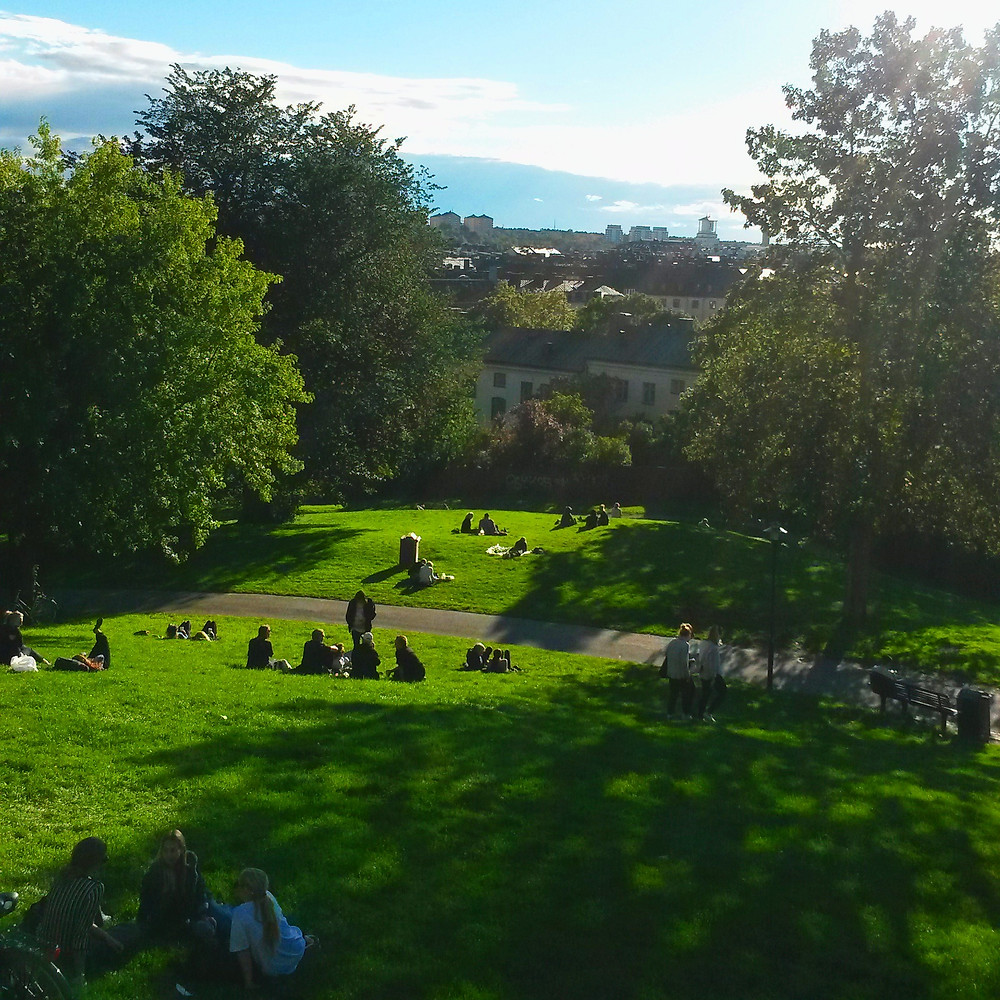 view from Sofia kyrka hill in stockholm