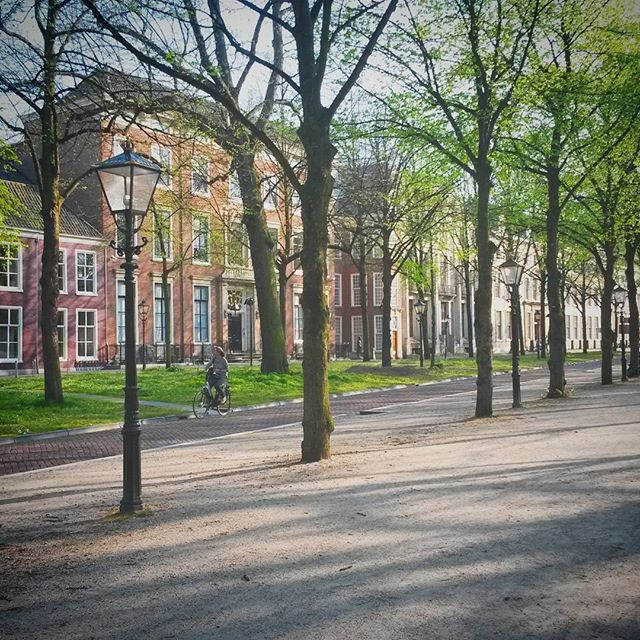 lange voorhout, The Hague