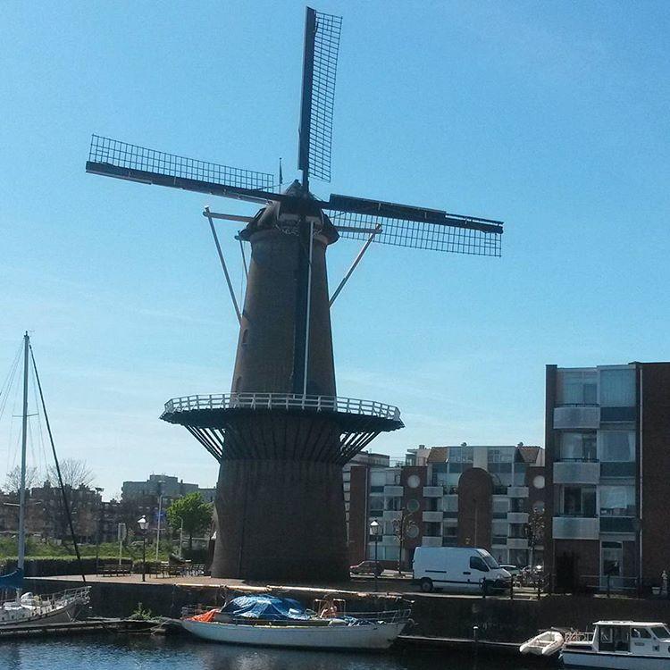 windmill in Delfshaven