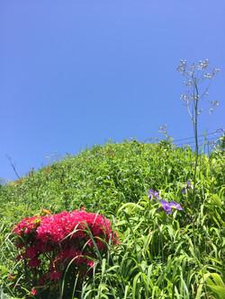 ものすごいお天気!