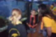 1000-061218-Cabrillo-Aquarium-Camp1a-js.