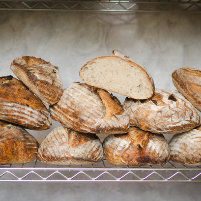 Febre de Pão
