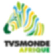 TV5monde Afrique stage