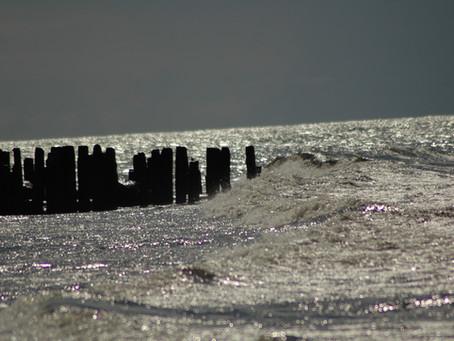 Lietuvos pakrantėje bus išbandytos pontoninės gaudyklės