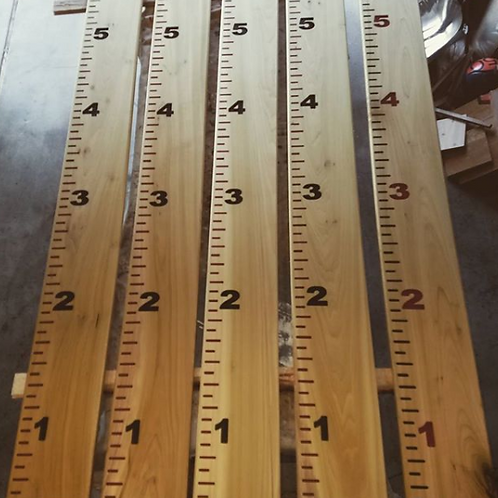 Kids Growth Rulers